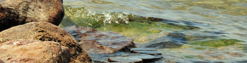 kristallklares Wasser des Stechlin